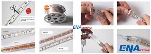 led-day-5050-ena-vietnam-2