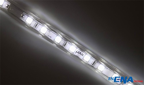 led-day-5050-ena-vietnam-6